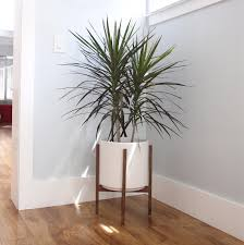 Floor Planter Florent Pottery Barn Carpet Flooring Ideas