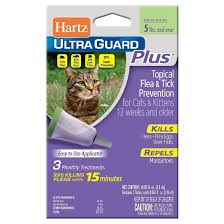 flea treatment for cats hartz ultraguard plus flea tick drops for cats 3ct target