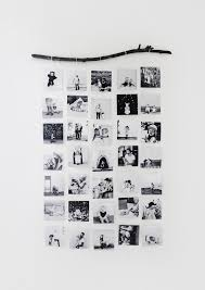 Tree Branch Picture Display