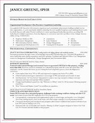 Resume Sites For Recruiters Sample Recruiter New Examples A Teacher
