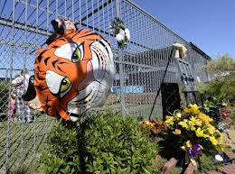 Truck Stop Owner Plans To Pursue Another Tiger, Stuff Tony For ...