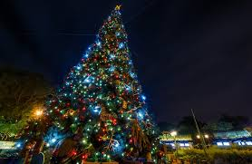 Griswold Christmas Tree by Ultimate 2017 Disney World Christmas Guide Disney Tourist Blog