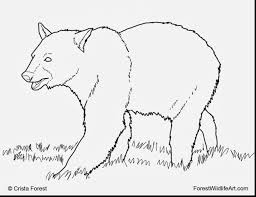 Great Black Bear Coloring Book Pages With Barney And Halloween