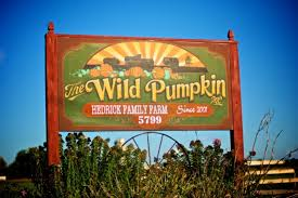 Pumpkin Farms In Bay County Michigan by The Wild Pumpkin
