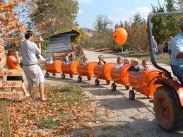 Seymour Pumpkin Festival Parking by Best 25 Farm Fest Ideas On Pinterest Farm Games Farm Party