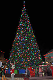 Prelit Christmas Tree That Puts Up Itself by 55 Best Green Christmas Images On Pinterest Christmas Ideas