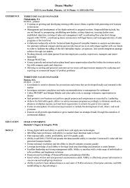 Download Territory Sales Manager Resume Sample As Image File