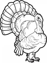Turkey Coloring Pages Online 75628