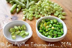 comment cuisiner les f es fraiches comment écosser les fèves les papilles estomaquées les