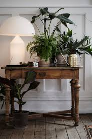 Grow Lamps For House Plants by Best 25 Grow Lamps Ideas On Pinterest Grow Lights Natural
