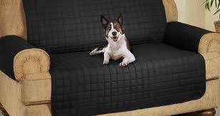 Gray Sofa Slipcover Walmart by Sofa Dog Sofa Cover Elegant Maytex Reeves Polyester Spandex Sofa