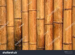 100 Bamboo Walls Park Stock Photo Edit Now 1016116132 Shutterstock
