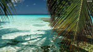 28 Tropical Beach Backgrounds Wallpapers