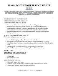 Resume Examples For Students With No Work Experience Pdf Example On Resumes