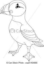 Atlantic Puffin Coloring Page