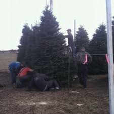 Christmas Tree Lane Ceres Ca Address by Hollman U0027s Fresh Christmas Trees Closed Christmas Trees 4204