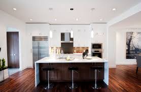 Modern Kitchen Cabinets Contemporary With Brown Cabinet Doors