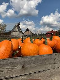 Southern Ohio Pumpkin Patches by Fowler Pumpkin Patch Home Facebook