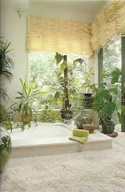Plants In Bathrooms Ideas by Best 25 Jungle Bathroom Ideas Only On Pinterest Bathroom Plants