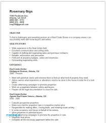Real Estate Agent Resume Examples Career Objective For Physic Minimalistics
