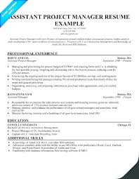 Project Management Resumes Examples Of Resume Make Your Samples A Manager Construction Example