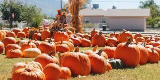 Las Cruces Pumpkin Patch by Pumpkin Patch Brings Fall Spirit To Alamogordo