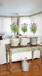 8 Bring Colorful Potted Plants Indoors