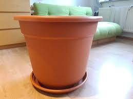 pflanzkübel blumentopf groß