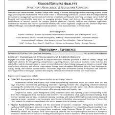 Business Analyst Resume Examples Truemedoil
