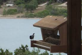Squirrel Feeder Adirondack Chair by Free Woodworking Plans For A Bird Feeder
