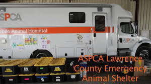 ASPCA Sets Up An Emergency Animal Shelter In Lawrence County ... Beaufort County Officials Aspca Still Vesgating Allegations Of Amazoncom Dog Traing Pads 100 Pack Pet Supplies This Gowanus Building Sheltered The Animals Brooklyn Louisiana State Animal Response Team Lsart Urges Animal Lovers To Get Tough On Dog Fighting American Society For Prevention Cruelty Facts Know Saving Animals In Nyc And Beyond Am New York Chained Receives 5000 Grant From The News Herald Super Success Transport Our Rescue Partners Through Aspcakittennursery Instagram Photos Videos Mexinsta 2016 Old Salem Farm Spring Horse Shows Embrace Nonprofit Causes Cruelty Mobile Unit Unveiled By Nypd Wpix 11