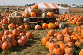 Lehner Pumpkin Farm by Things To Do In Columbus This Weekend Sep 29th U2013 Oct 1st 2017