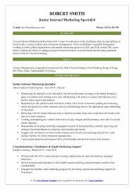 Junior Internet Marketing Specialist Resume Model