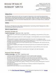 Director Of Sales IV Resume Format