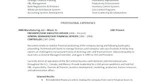 Example Summary For Resume Sample Executive Resumes Samples Statement Software