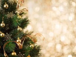 11 Loudoun Cut Your Own Christmas Tree Farms