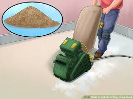 Dog Urine Wood Floors Get Smell Out by 4 Easy Ways To Get Rid Of Dog Urine Smell Wikihow