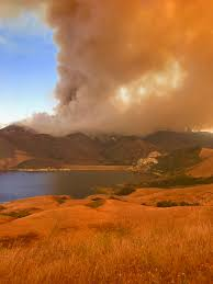Live Oak Pumpkin Patch Fire by Alamo Fire Explodes To 19 000 Acres Ksby Com San Luis Obispo