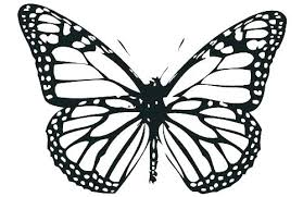 Practical Monarch Butterfly Coloring Page Pages Wings
