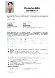 Employment Cv Examples Application