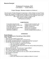 Business Management Resume Example Analyst Entry Level Project Inside Manager