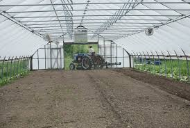 High Tunnel Greenhouse | Rimol Greenhouses Table An Chairs Images Wainscot Ding Room Classic Umbrella X7 Sos Office Supplies Hull Best Fniture Amish And Mennonite Food Stores In New York Compel Home Facebook