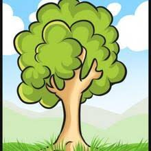 vign 6t3 how to draw a simple tree tutorial drawing 94p tcr