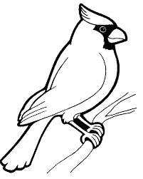 Rare Bird Coloring Pages