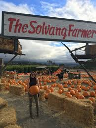 Cal Poly Pumpkin Patch 2016 by Lifestyle U2013 Garden Variety Runner