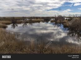 100 Ampurdan Marsh Natural Park Image Photo Free Trial Bigstock