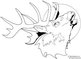 Tule Elk Deer Coloring Page From Category Description I