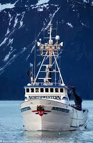 Kachemak Gear Shed Shipping by Best 25 Fishing In Alaska Ideas On Pinterest Alaska Cruise