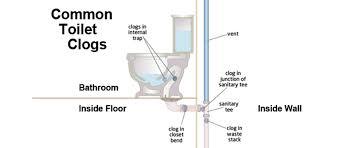 bathroom drain clogged aloin info aloin info