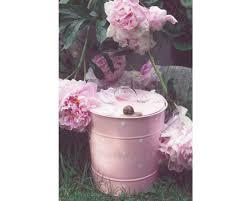 isabelle kompost eimer für biomüll in rosa 3 liter
